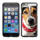 Hard Phone Case Cover Skin For Apple iPhone Dog with red neck scarf