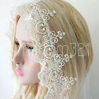 1M Mesh Lace Embroidered Scalloped Heart Trimming Sewing Craft Bridal Veil Decor