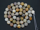49Pcs Natural Ocean Fossil Coral Agate Gemstone Round Loose Beads 8mm