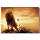11865 Chronicles Of Narnia Aslan Lion Poster Wild Animals