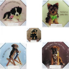 DOG WALL PLAQUES, BULLDOG, YORKIE, CHOC LAB, BOXER, BORDER COLLIE PUPS, PUPPIES