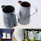 2 Sizes Retro Watering Cans Metal Craft Garden Plants Ornaments Home Table Decor