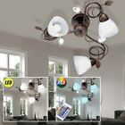 LED Ceiling Lamp RGB Remote Control Alabaster Glass Corridor Light dimmable new