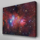 SC225 Fox Fur Nebula Scenic Wall Art Picture Large Canvas Print