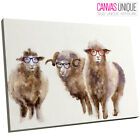 A763 Brown Funny Sheep Watercolour Animal Canvas Wall Art Framed Picture Print