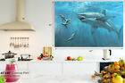 A158 underwater shark seal  Animal Canvas Wall Art Framed Picture Print