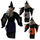Halloween Creepy Posable Hanging Wicked Witch Banshee Window Wall Decor 90cm