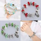 Wostu European 925 Silver Charms Bracelet With Colorful Flower Beads For Women S