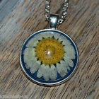 Handmade Real Daisy set in Midnight Blue resin Necklace -  Flower Jewellery