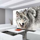 Fleece Photo Wallpaper no. 1518 ! Animals Husky Dog Winter Snow gray ! liwwi