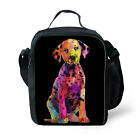 Cute Portable Insulated Thermal Cooler Lunch Box Bag Carry Tote Workout Picnic