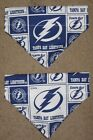 Tampa Bay Lightning Dog Bandana - 5 sizes XS - XL $4.49 USD on eBay