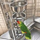 Bird Feeders Stainless Steel Cups Parrot Food Holder Container Bowl Cockatiel