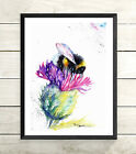 Bee, Print of Original watercolour painting by Artist Be Coventry wildlife Art