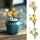 Artificial Plastic Miniature Succulent Plants Fake Flowers Home Office Decor