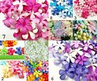 Внешний вид - Plumeria Frangipa mulberry paper Flowers Craft & D.I.Y Multi Colour Scrapbooking