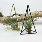Garden Plant Geometric Metal Iron Planter Flower Pot Container Home Table Decor