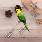 Stainless Steel Parrot's Toy Feeding Fork Food Fork Bird Cage Accessories Supply