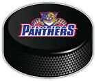 Florida Panthers NHL Logo Hockey Puck Car Bumper Sticker Decal -9'',12''or 14'' $13.99 USD on eBay