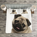 Pug Quilted Bedspread & Pillow Shams Set, Young Puppy Lying on Floor Print image