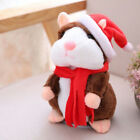 Cheeky Hamster High Quality + Free Shipping