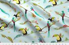 Tucan Tropical Bird Jungle - tucan & chameleon Fabric Printed by Spoonflower BTY