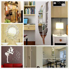 Removable  Mirror Wall Stickers Home Decal Art Vinyl Room Decor Feather Fun Diy