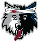 "Minnesota Timberwolves  NBA Basketball Car Bumper Sticker Decal ""SIZES"" ID:10 on eBay"