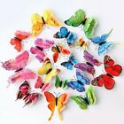 Fashion 12pcs/set 3d Butterfly Wall Stickers Pvc Child Room Decal Home Decor Hot