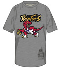 Men's Toronto Raptors Mitchell Ness Grey Red Gold Retro Logo T Shirt Hardwood on eBay