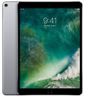 NEW Apple iPad Pro 2nd Gen. 64GB, Wi-Fi, 10.5in - Space Gray for sale  Monsey