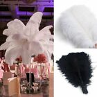Kyпить 20/50/100pcs Wholesale Natural Ostrich Feathers 12
