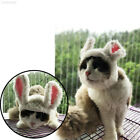 E2B4 Colorful Dog Lion Mane Dress Up Toys Funny Cat Cosplay Wig