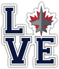 "Winnipeg Jets Love NHL Sport Car Bumper Sticker Decal - ""SIZES"" $4.0 USD on eBay"