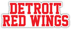 "Detroit Red Wings Slogan Nhl Sport Car Bumper Sticker Decal - ""sizes"""