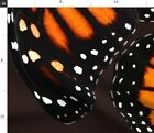 Monarch Butterfly Wing Skirt Dress Large Fabric Printed by Spoonflower BTY