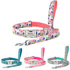 Nylon Personalized Dog Collar Leash Set Custom Engraved Boy Girl Pet Dog ID Name