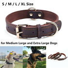 Genuine Leather Dog Collar Durable Alloy Hardware for Medium Extra Large Dogs