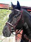 FSS Sparkly BLING Crystal Browband Noseband BRIDLE MADE WITH SWAROVSKI ELEMENTS