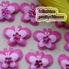 Hot Pink Butterfly Overlay Appliques Padded Craft Sewing Scrapbooking Trim APQJ