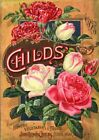 Childs 2 Vintage Seed Cover Picture Art Print Canvas Poster A4 A3 A2 A1