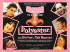 POLYESTER 04 VINTAGE B-MOVIE REPRODUCTION ART PRINT A4 A3 A2 A1