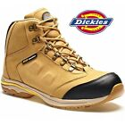 REDUCED DICKIES CORDOBA SAFETY WORK BOOTS STEEL TOE CAP/ MS HONEY SIZE UK 6 - 12