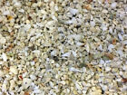 Hawaiian Puka Shell Substrate Saltwater Marine Aquarium Fish Tank Gravel
