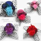 Mini Top Hat Feather Net Flower Hair Clips Fascinators Wedding Party Ascot Hen