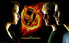 The Hunger Games - Edible Icing Image - Birthday Cake Topper Decoration