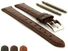 Womens Genuine Crocodile Leather Watch Strap Band Miami CS Buckle & Spring Bar