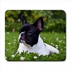 French Bulldog - Mousepads or Coasters (8 Styles) -BB4424
