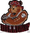 Dilligaf Bear Embroidered Biker Patch