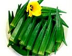 Jade Okra Seeds - Extremely high yielding and tender!! - Early producing!!!